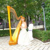 Арфа на свадьбу