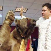Дрессированный  медведь на свадьбу