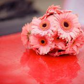 букет невесты из розовой герберы