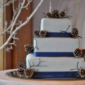 свадебный торт зимние шишки