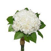 Букет невесты  с белыми гвоздиками